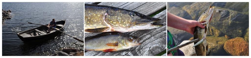 fisketriptyk
